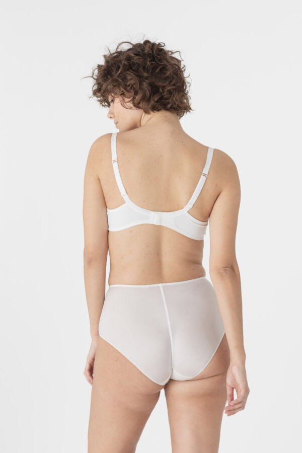 flora high waist brief rear
